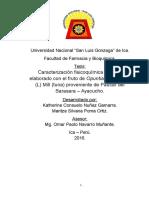 BORRADOR DE LICOR DE TUNA- NUÑEZ Y POMA.docx