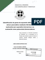 Identificación de genes de expresión diferencial