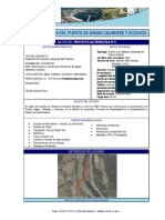 Infografia de Puente