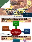 fisiologia SNC generalidades