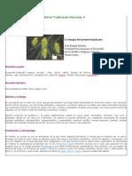 Atlas de Las Plantas de La Medicina Tradicional Mexicana_aloe