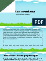 Hutan Montana