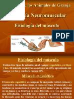5 Presentación Fisiología Del Musculo 060405