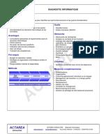 actarea consulting fiche produit diagnostic informatique.pdf