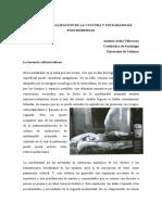 La_patrimonializacio_n_de_la_cultura_y_s.pdf