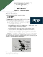 TRABAJO PRACTICO N°1.docx