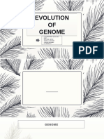 Mid Genome Evolution