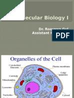 moleculer 1.pptx