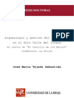 ArqueologiaYGestionDelTerritorioEnElAltoValle