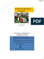 Las Semillas en La Agricultura Econolocia