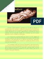 el_prematuro.pdf