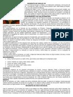 BIOGRAFÍA DE CARLOS VIII.docx