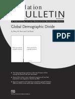 60.4GlobalDemographicDivide_2.pdf