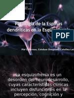 Patología de La Densidad de Las Espinas Dendríticas en La Esquizofrenia