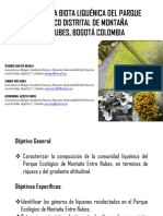 Liquenes PARQUE ECOLÓGICO DISTRITAL Entrenubes Aula Ambiental