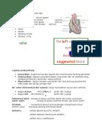 Circulatory Poin 2