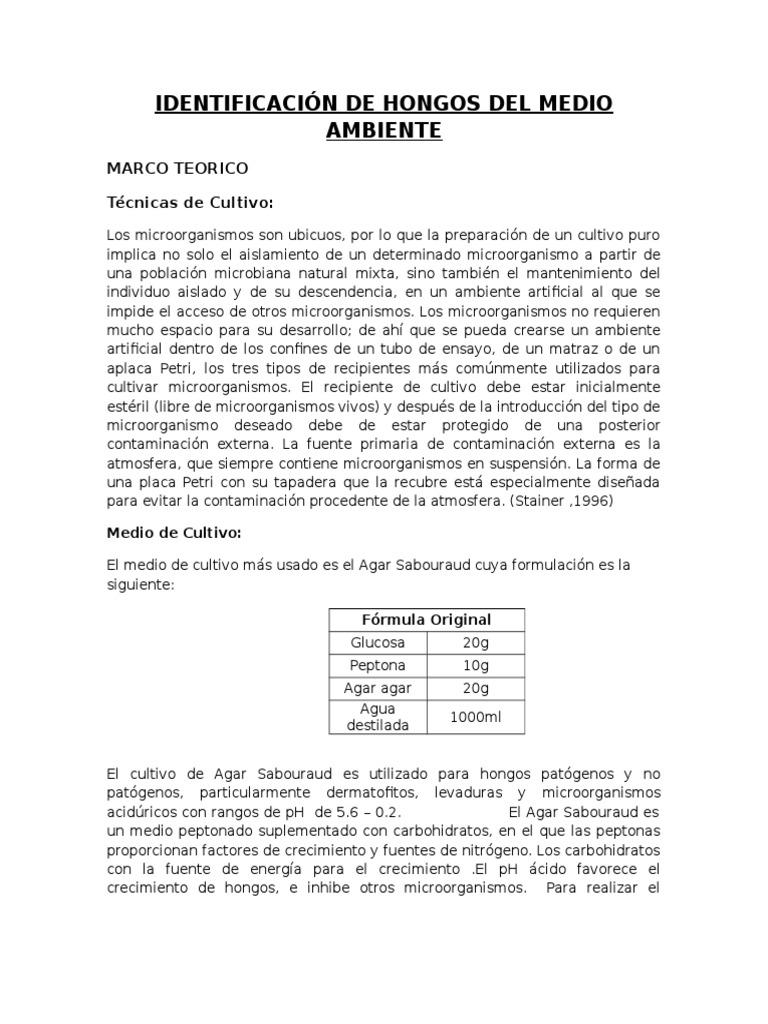 Famoso Marco Patógeno Aéreo Galería - Ideas Personalizadas de Marco ...