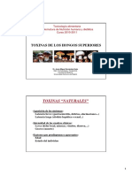 PPT_Toxinas de Hongos superiores HERNANDEZ.pdf