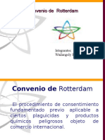 Convenio Rotherdam.ppt