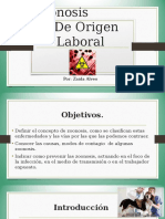 ZOONOSIS LABORAL