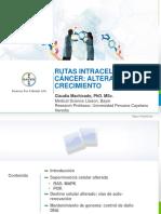 Vias Intracelulares Crecimiento Cancer_final