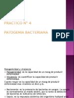 Practico 4patogenia