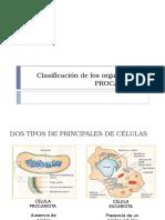 Sesión 2a Celulas procariotas.pptx