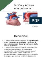 Coartación y Atresia Arteria pulmonar.pptx