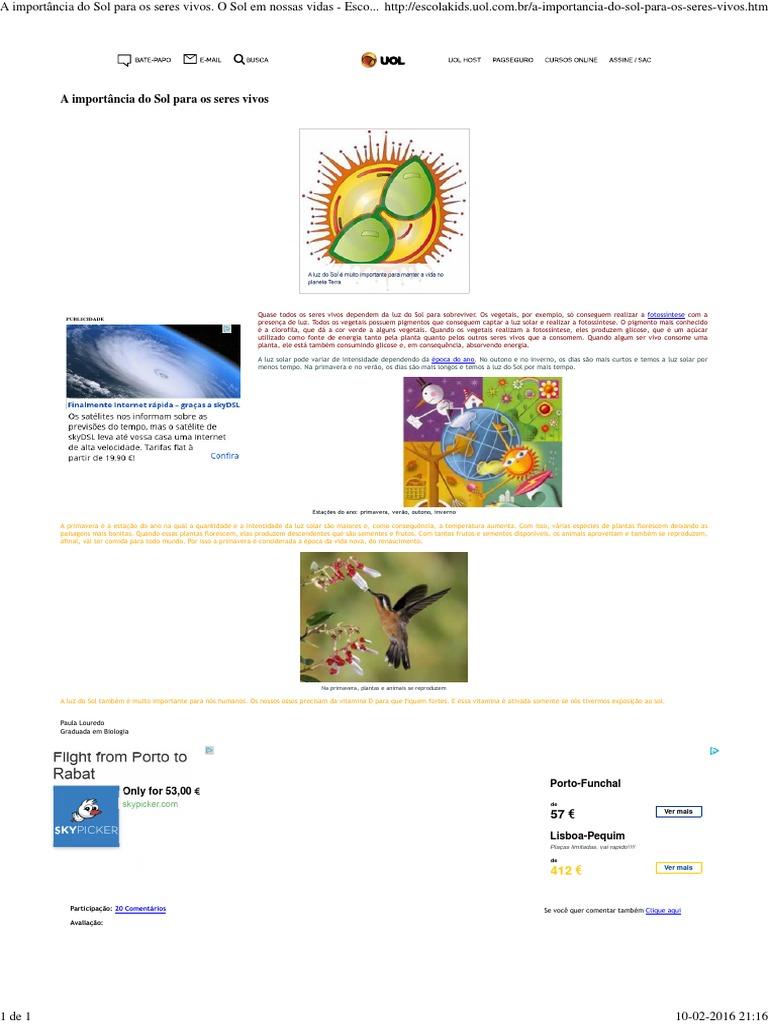 9e8f1639b5 A importância do Sol para os seres vivos: fotossíntese