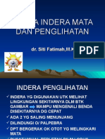 Panca Indera Mata
