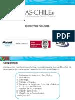 A.7 Directivos Publicos