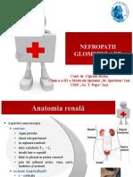 Nefropatii_glomerulare
