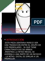 Presentación1 Coraima Pd