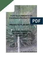 Plan Rector Agave Mezcal