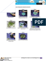 menanam-anggrek-botol-perawatannya.pdf