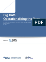 Ema Operationalizing the Buzz Big Data