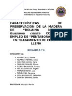 PRESERVADO_B5B6.vFinal.docx