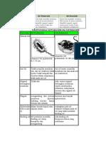 Tabel Perbedaan Sel Prokariotik Dan Sel Eukariotik