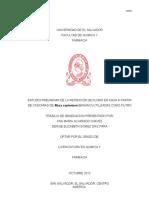 Tesis Completa Universidad El Salvador Cascara de Platano