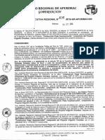 Modelo de Resolucion de Nulidad en Contrataciones Con El Estado