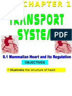 157108298-8-1-Structure-of-Heart.ppt