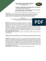 """DETERMINAÇÃO DO """"STATUS"""" NUTRICIONAL DE NITROGÊNIO NO FEIJOEIRO UTILIZANDO IMAGENS DIGITAIS"""