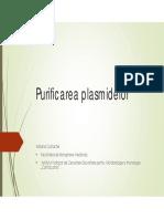 Laborator 1_Purificarea Plasmidelor