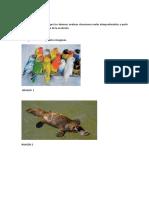 DG_Clase_2__Consigna_secundaria_BIOLOGIA.pdf