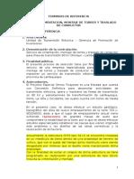 Tr. Cimentacion , Montaje de Torres y Traslado de Conductor Rev-0