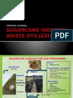 sugarcaneindustrywasteutilization-140410075042-phpapp01