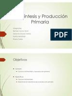 Fotosintesis y Produccion Primaria