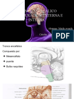 Configuracion Interna y Externa Del TE.pptx