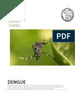 Dengue 2 Año