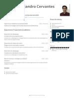 ernesto alejandro cervantes villa visualcv resume
